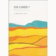9787544248587: Under the Tuscan Sun (Chinese Edition)