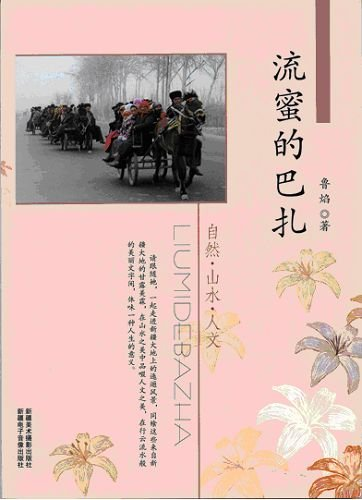 Honey flow Bazaar(Chinese Edition): LU YAN ZHU