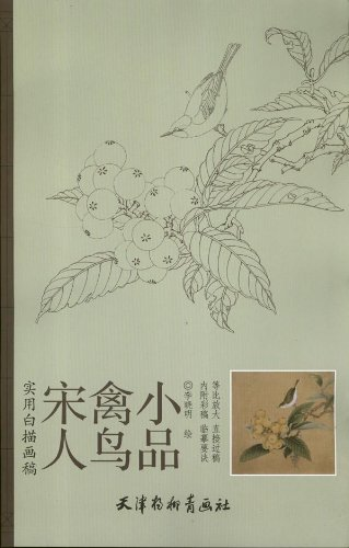 9787554700853: Practical no good drawings : Song bird sketch(Chinese Edition)