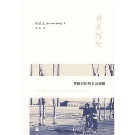 9787563393893: Where Is My Homeland-Homeland Trilogy of Jia Zhangke (Chinese Edition)