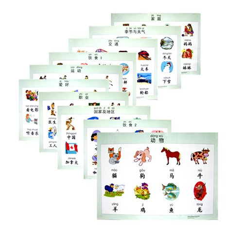 9787802002982: Chinese Character Poster Pack: Pinyin Language