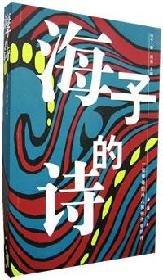 9787805680026: Haizi Poetry (Paperback)