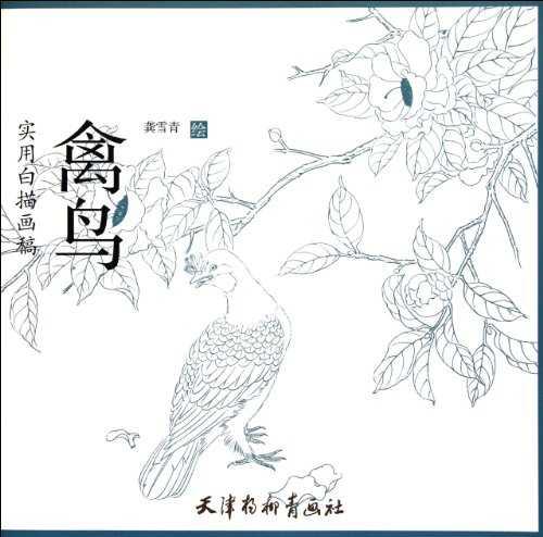 9787807388289: Poultry and Birds-Practical Line Drawn Sketchings (Chinese Edition)