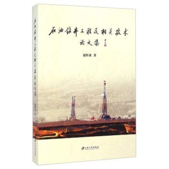 9787811308167: Drilling engineering and related technical papers(Chinese Edition)