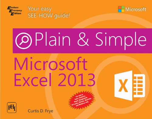 9788120349100: Microsoft Excel 2013 Plain And Simple