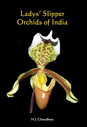 9788121108683: Ladys' Slipper Orchids of India