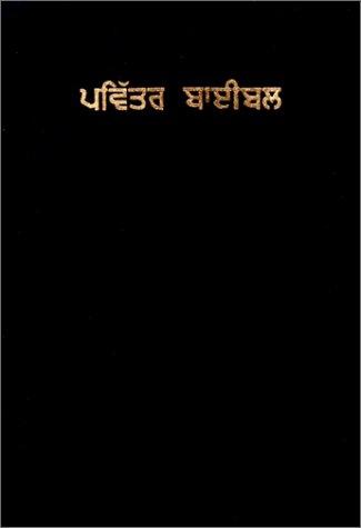 Punjabi Holy Bible (Punjabi Edition)
