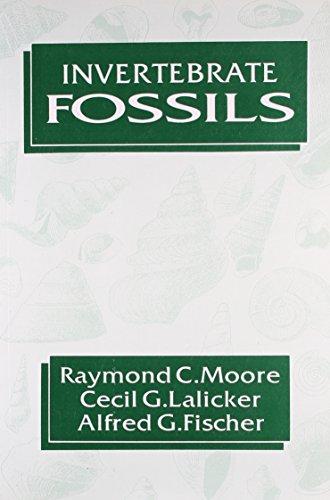 9788123911397: Invertebrate Fossils