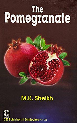 9788123926872: The Pomegranate