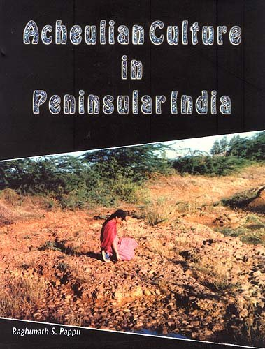 9788124601686: Acheulion Culture in Peninsular India: An Ecological Perspective
