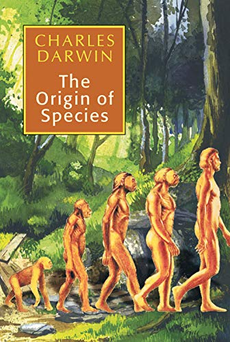 What led Darwin to formulate his ideas about the origin of species?