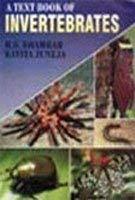 9788126104161: A Textbook of Invertebrates