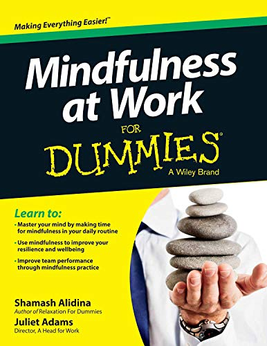 9788126550449: Mindfulness At Work For Dummies
