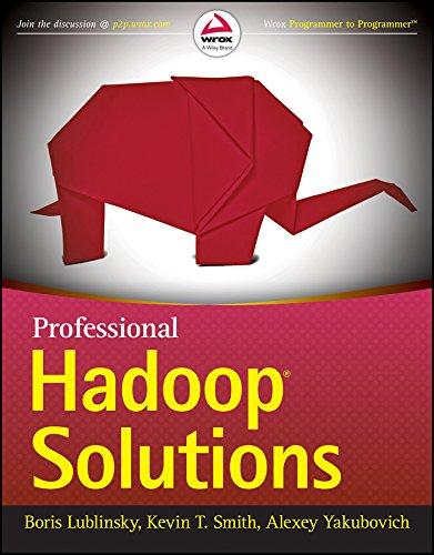 9788126551071: Professional Hadoop Solutions