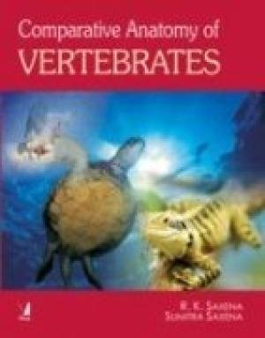 9788130904023: Comparative Anatomy of Vertebrates