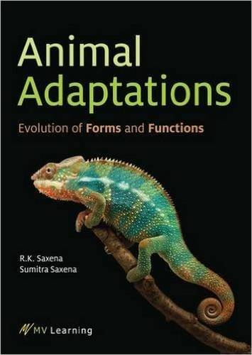 Animal Adaptations: Evolution of Forms and Functions (Paperback): R. K. Saxena, Sumitra Saxena