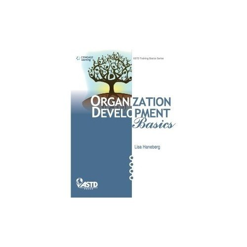 Organization Development Basics: Lisa Haneberg