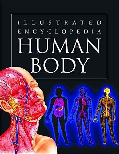9788131907337: Human Body