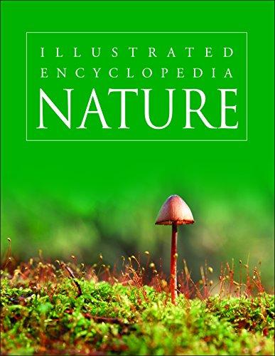Nature (Illustrated Encyclopedia): Pegasus