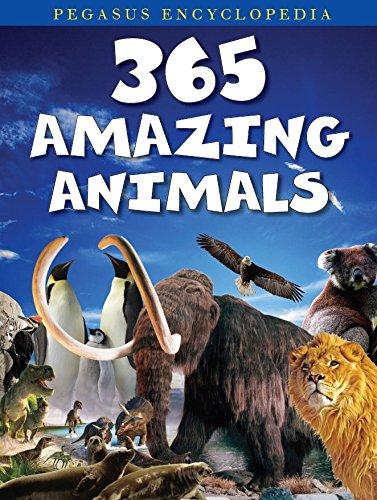 365 Amazing Animal: Pegasus