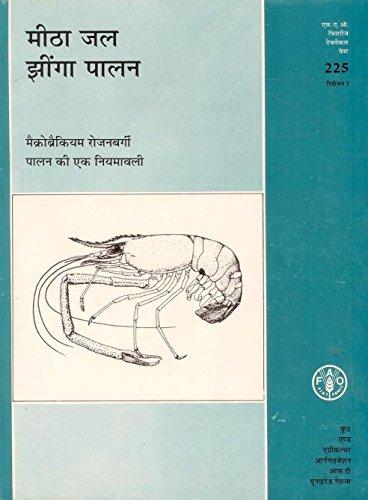 Meetha Jal Jhinga Palan: Macrobranchium Rosenbergii Palan: New, Michael B.