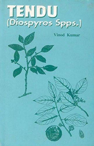 Tendu: Diospyros Spps.: Vinod Kumar