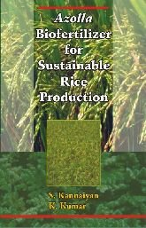 Azolla Biofertilizer for Sustainable Rice Production