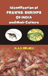 Identification of Prawns/Shrimps and their Culture: Dholakia Anshuman D.