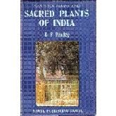 Sacred plants of India: Plants for human kind: Pandey, Brahma Prakash