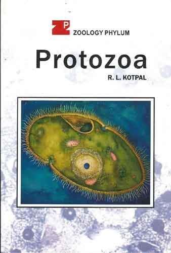 9788171338795: Protozoa (Zoology Phylum)