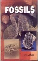 9788171417223: Fossils