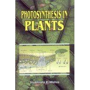 Photosynthesis in Plants: Shubhrata R. Mishra