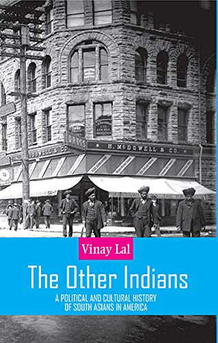 The Other Indians: A Political and Cultural History of South Asians in America: Vinay Lal