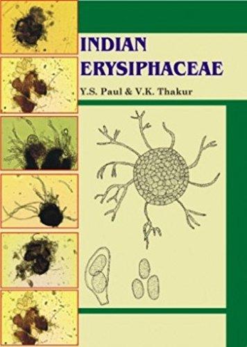 Indian Erysiphaceae: V.K. Thakur,Y.S. Paul