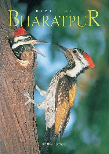 Birds of Bharatpur: Rajpal Singh