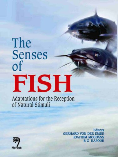 9788173195150: The Senses of Fish: Adaptations for the Reception of Natural Stimuli