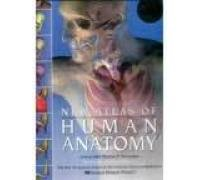 9788174360885: New Atlas of Human Anatomy : Includes CD-ROM Sampler Interactive