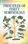 Principles of Insects Morphology