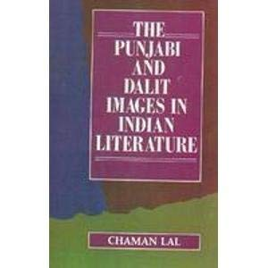 9788174889171: Punjabi and Dalit Images in Indian Literature
