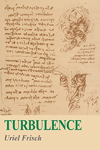 9788175960602: Turbulence