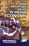 Direct Taxation in India : Some Aspects: Anil Kumar Jain