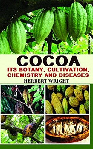 Cocoa: Its Botany Cultivation Chemistry and Diseases: Herbert Wright