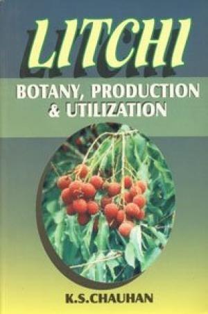 Litchi : Botany Production: Chauhan K.S.
