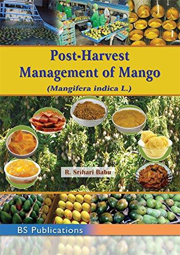 Post-Harvest Management of Mango (Mangifera Indica L.): edited by R.