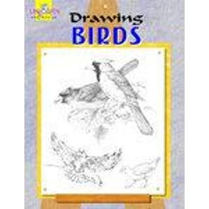 Drawing Birds: Rajni,Ajay