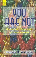 9788178222615: You Are Not: Beyond the Three Veils of Consciousness