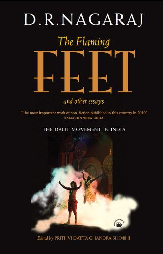 The Flaming Feet and Other Essays: Nagaraj D.R.