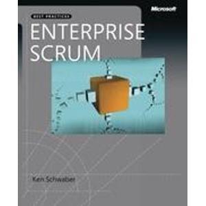 9788178531267: Enterprise and Scrum