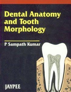 Dental Anatomy and Tooth Morphology: P Sampath Kumar