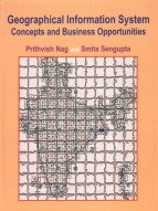 Geographical Information System Concepts and Business Opportunities: Prithvish Nag,Samita Sengupta